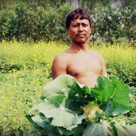 sunderbans_farming
